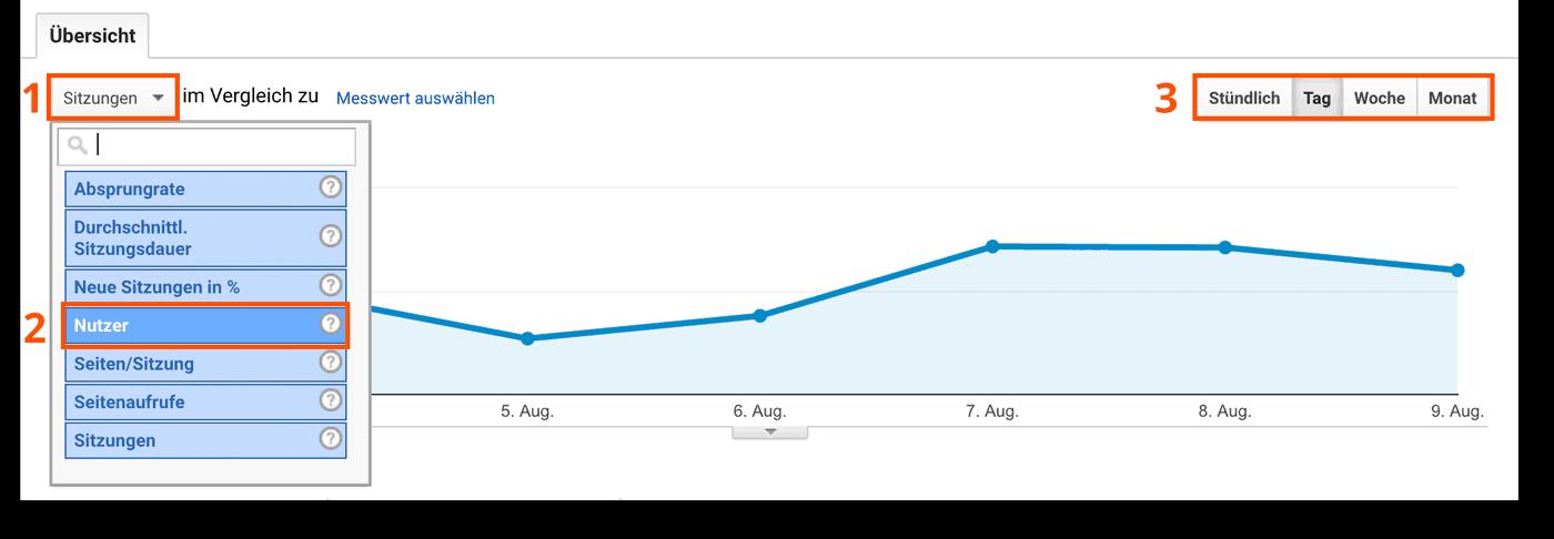 Übersicht über Anzahl der Webseitenzugriffe