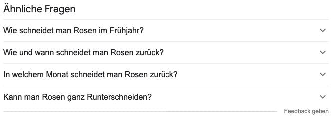 """""""Ähnliche Fragen"""" von Google zum Suchbegriff"""