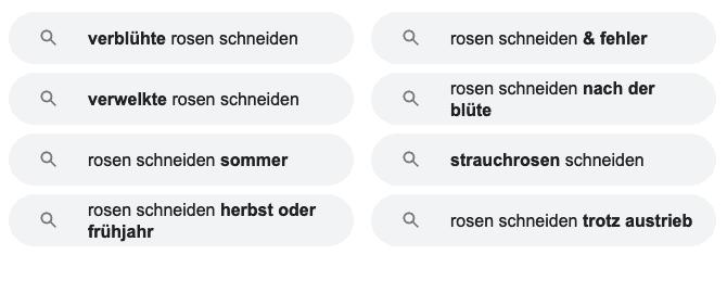 Weitere Vorschläge von Google zum Suchbegriff